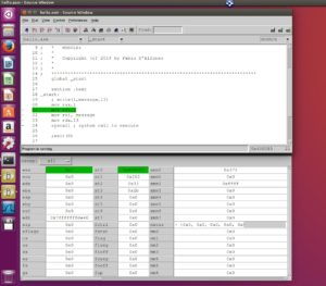 insight debugger ubuntu 16.04 LTS